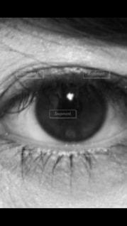 モノクロの写真・画像素材[605543]
