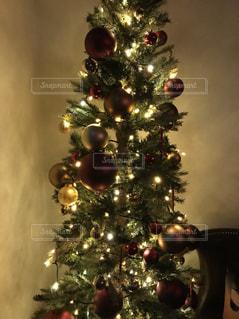 暗い部屋でクリスマス ツリーの写真・画像素材[966302]