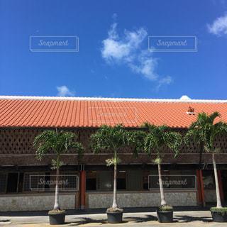 空,雲,晴れ,沖縄,屋根,休日,休み,のんびり,シーサー,椰子,お出かけ,瓦屋根