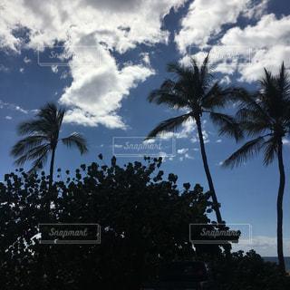 ハワイの空の写真・画像素材[1117951]