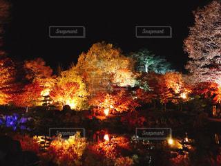 バック グラウンドで聖ヨハネのかがり火と空に花火の写真・画像素材[1650785]