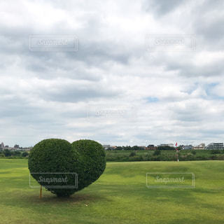 空,芝生,緑,雲,青空,アート,ハート,オシャレ,ゴルフ,レジャー,heart,お出かけ,日,世界平和,もくもく,陽