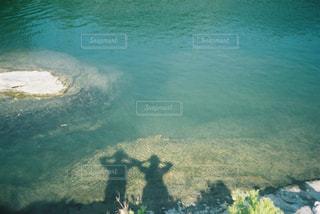 緑の写真・画像素材[468071]