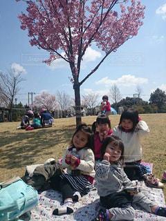 公園 - No.415578