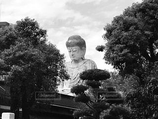 兵庫の大仏様。の写真・画像素材[825359]