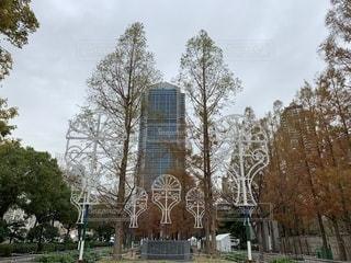 公園,ホワイト,ルミナリエ,神戸市,復興,ホワイトクリスマス,鎮魂