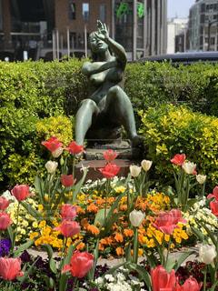 花満開の写真・画像素材[1980838]