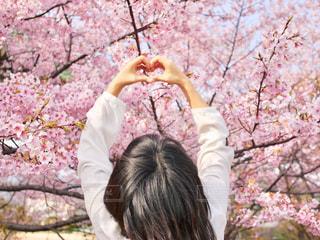 女性,1人,風景,花,春,桜,木,屋外,花見,少女,樹木,ハート,お花見,人,イベント,さくら,ブロッサム