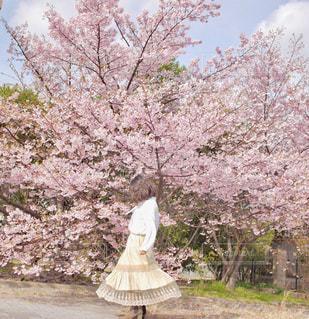 春コーデの写真・画像素材[3104882]