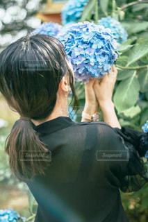 紫陽花を持つ女の子の写真・画像素材[3374484]