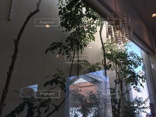 風景,インテリア,シャンデリア,オシャレ,cafe,喫茶店,居場所