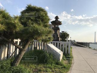 散歩,文化財,常夜灯,市川市,旧江戸川,常夜灯公園