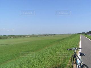 自転車,サイクリング,クロスバイク,江戸川サイクリングロード