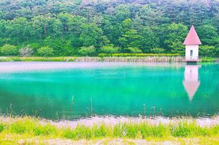 池の写真・画像素材[532061]