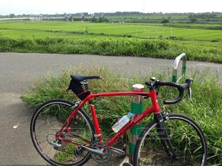 自転車の写真・画像素材[423151]