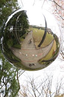 春,カップル,観光,旅行,箱根,神奈川県,彫刻の森美術館
