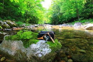 渓流釣りの写真・画像素材[3763887]