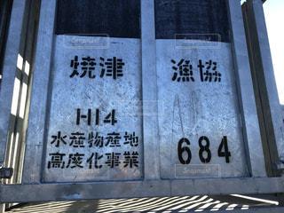 漁港,仕事,静岡,地方,焼津