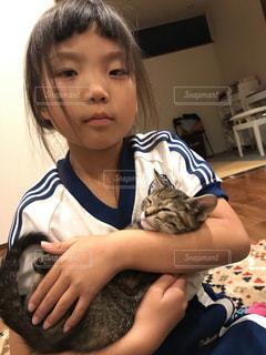 猫をかわいがっている人の写真・画像素材[3374920]