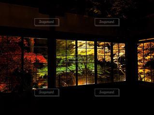 秋,紅葉,窓,もみじ,ライトアップ,佐賀