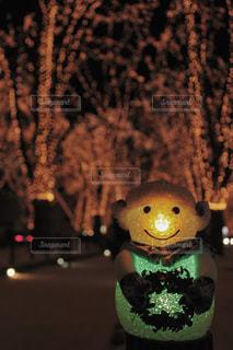 暗闇の中で座っているクマ - No.937031