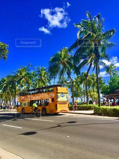 黄色のバス通りを運転 - No.1022680