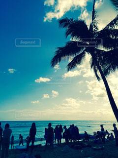ヤシの木とビーチの人々 のグループ - No.1195745