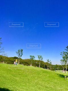 緑豊かな緑のフィールドに立っている人 - No.1251380
