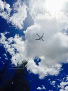 空の写真・画像素材[1580180]