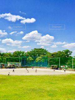 雲,旅,未来,少年,草野球,可能性