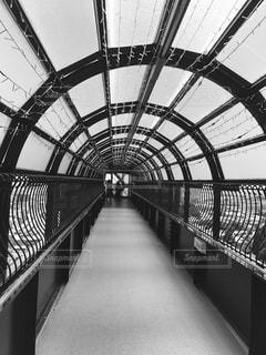 蜘蛛の巣トンネルの写真・画像素材[832644]