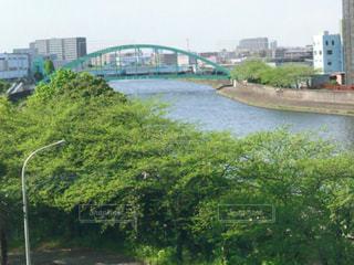 橋の写真・画像素材[453464]