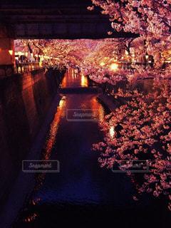 春 - No.429473