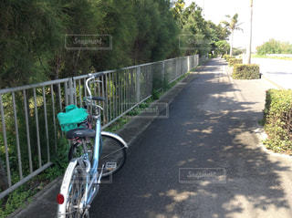 自転車,サイクリング