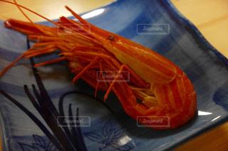 魚 - No.527155