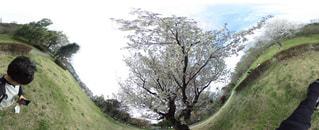 公園の写真・画像素材[567965]