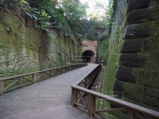 横須賀,猿島,無人島,ジブリの世界,切り通し,要塞