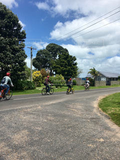 自転車,サイクリング,ニュージーランド,オークランド,レンタルサイクル,ワイヘケ島