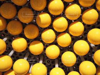 黄色の写真・画像素材[596670]