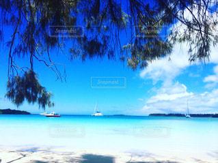 天国に1番近い島☆ニューカレドニアの写真・画像素材[1121549]