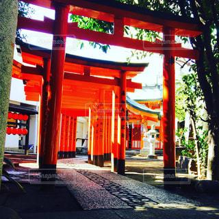 東京,神社,渋谷,青山