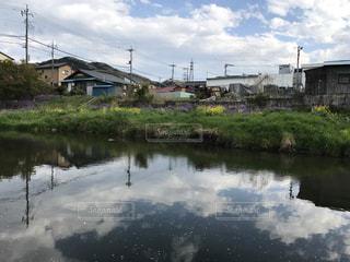 自然,空,桜,水辺,小川町,栃本親水公園