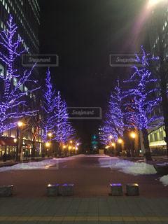 札幌,赤レンガ庁舎前