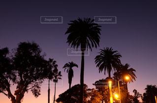 空の写真・画像素材[437155]