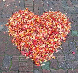 自然,紅葉,LOVE,赤,カラフル,綺麗,黄色,鮮やか,オレンジ,落ち葉,ハート,日本,japan,Autumn,大学,sweet,beautiful,♡,ありがとう,小さな幸せ,四季,nature,ポップ,感謝,春夏秋冬,lovely,fall,leaf,はーと,彩り鮮やか,女子大,清掃のおじさんが作ってくれた,Great,いつも元気よく挨拶してくれる清掃のおじさん,Tkankyou,WelcomeToJapan