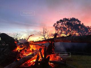空,夕日,綺麗,オーストラリア,焚き火