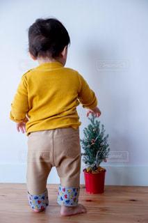 はじめてのクリスマスツリーの写真・画像素材[2800710]