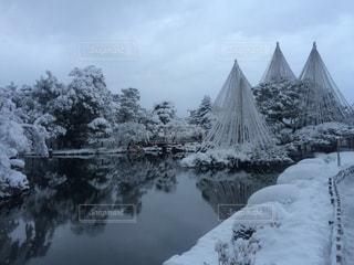 雪,池,金沢,兼六園,雪吊り