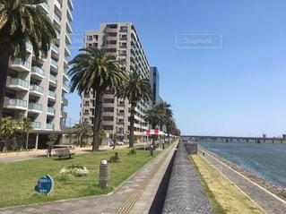 自然,公園,宮崎,わたしの街,大淀川