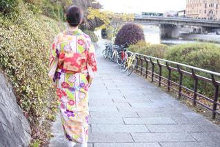 秋,京都,綺麗,観光,着物,旅行,大学生,11月,秋色